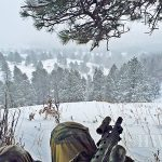 Wyoming Hunting in the Negatives – Part 2: Whitetail Deer