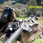 Epic Adventure: Hunting New Zealand's Wild Goats with an 6.5 Grendel AR-15
