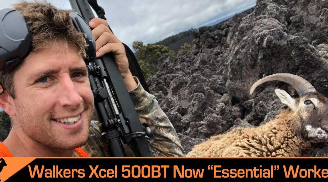 Unorthodox Hawaiian Hunting Review: Walkers Xcel 500 Bluetooth Ear Pro Muffs