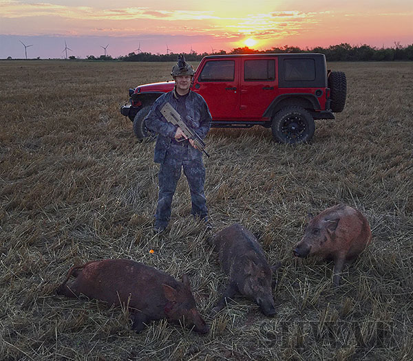 Hog Hunting with Tavor X95